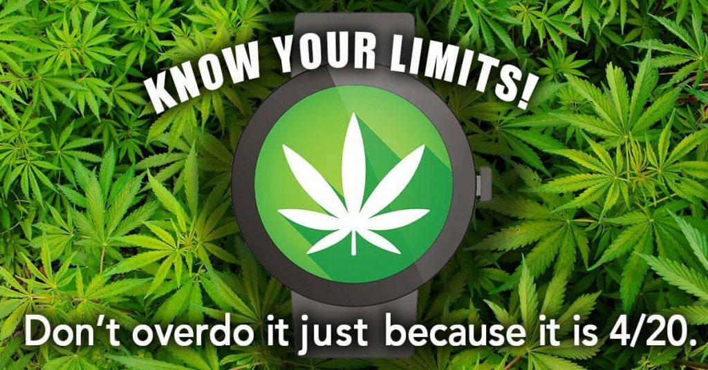 Do not consume too much marijuana
